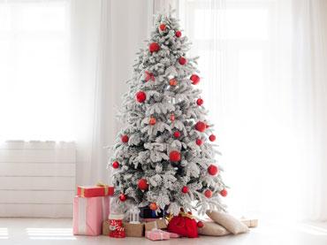 Božič in novo leto
