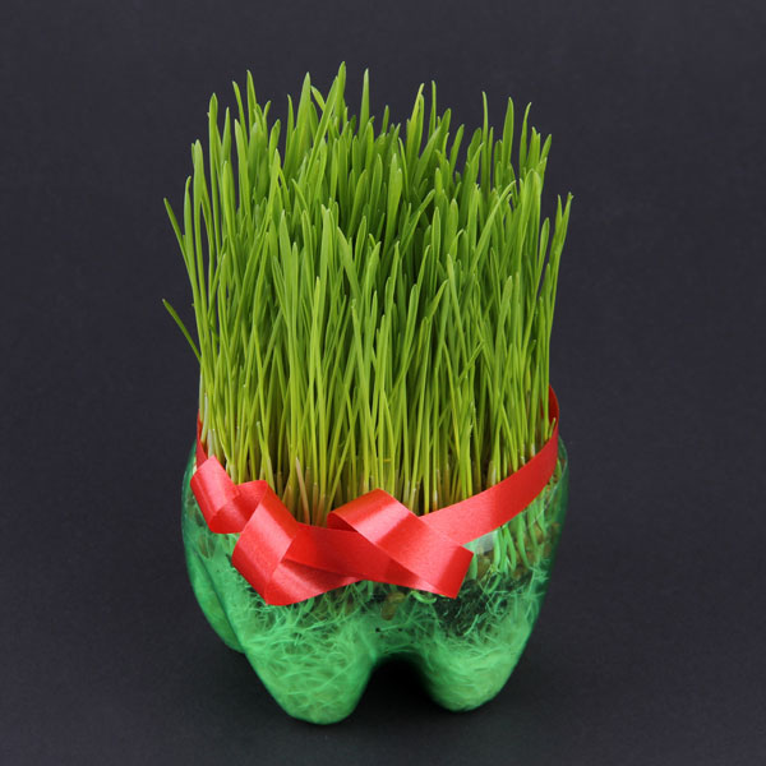 božično žito darilo
